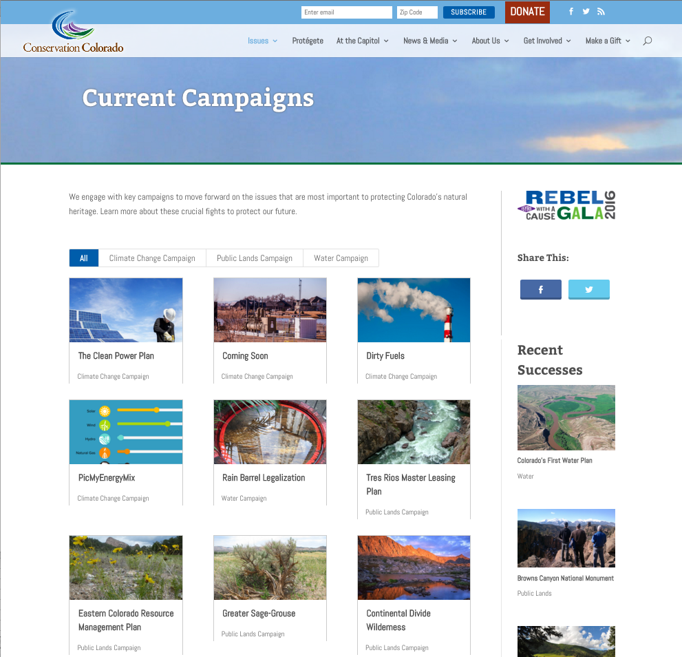 View all ongoing campaigns the organization prioritizes