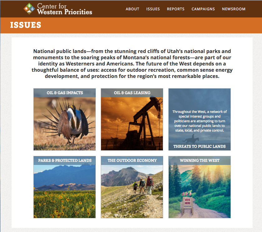 CWP Issues hub page with slide-over image grid